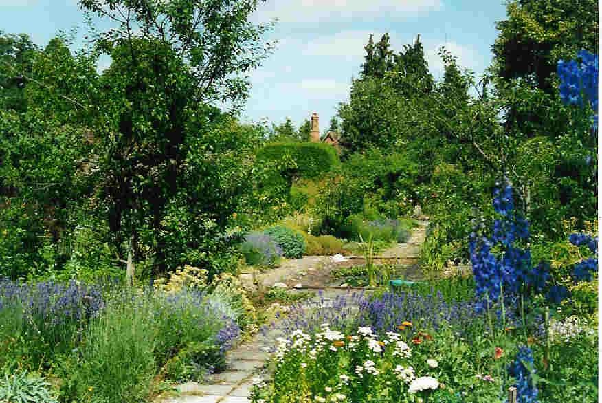Herb_Garden_6